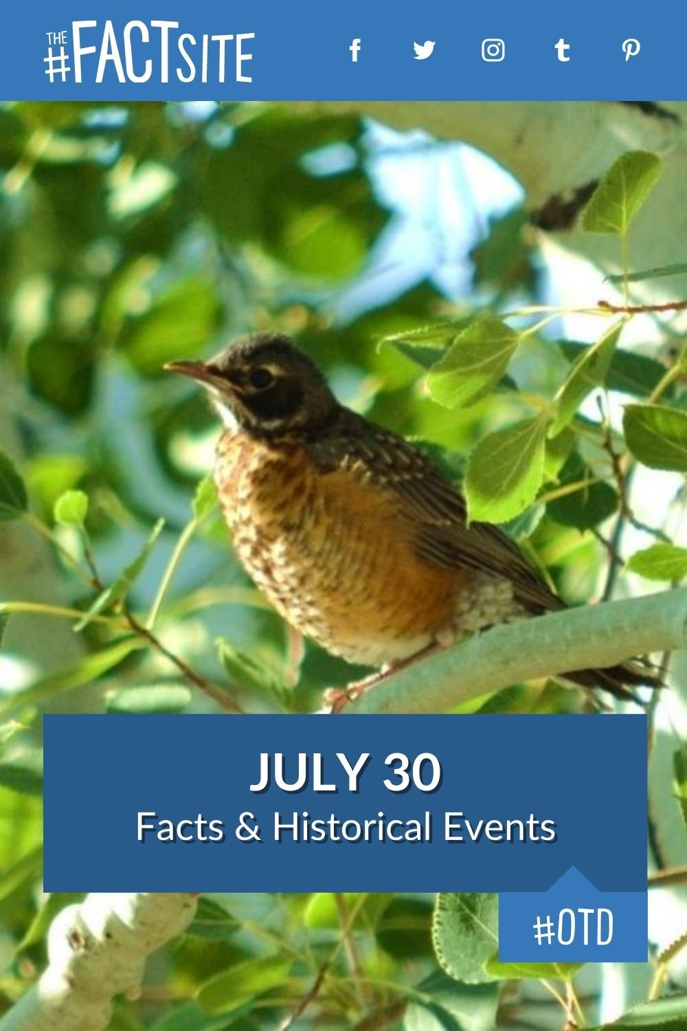 Facts & Historic Events That Happened on July 30