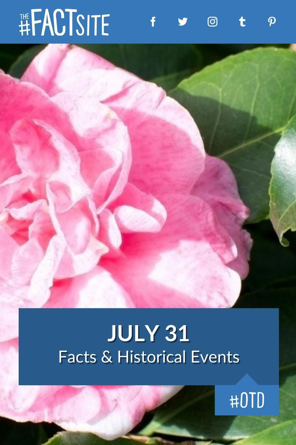 Facts & Historic Events That Happened on July 31
