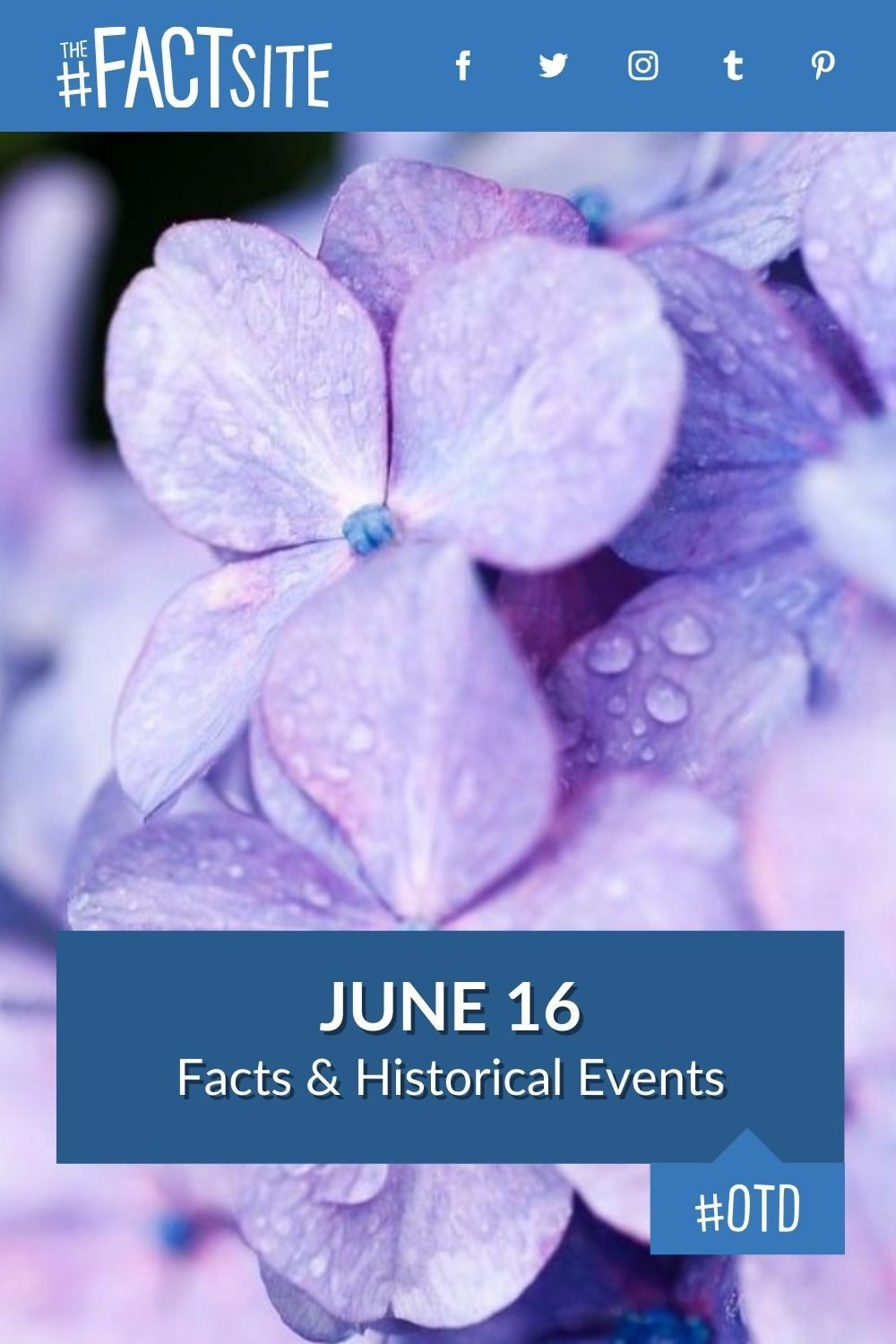 Facts & Historic Events That Happened on June 16