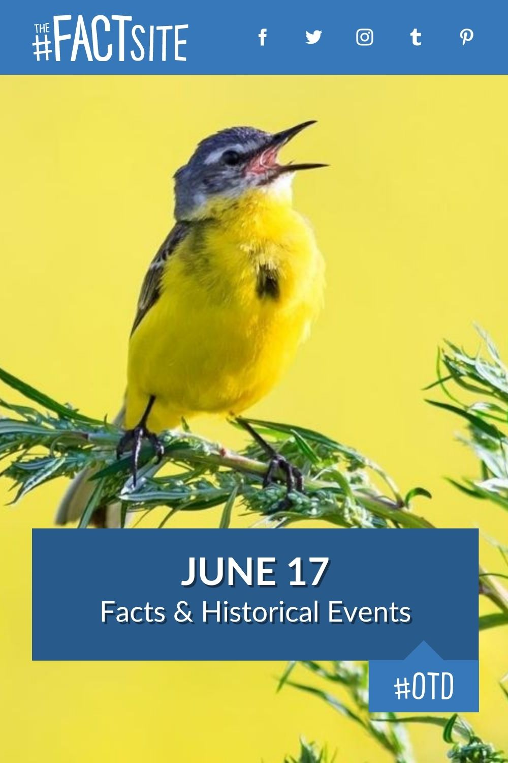 Facts & Historic Events That Happened on June 17