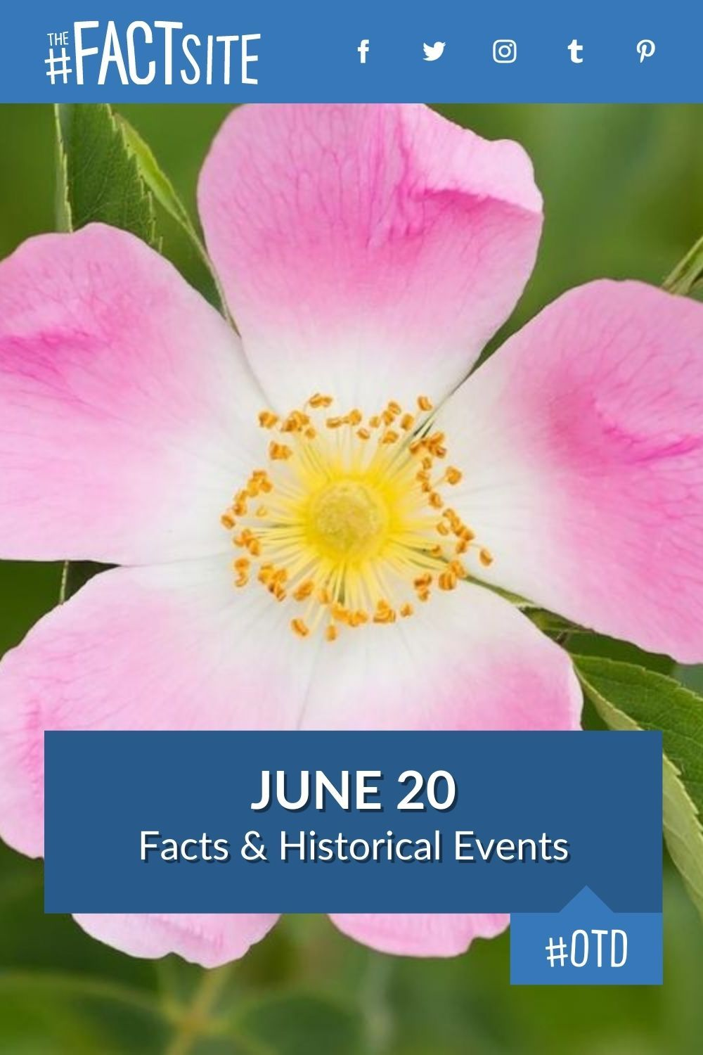 Facts & Historic Events That Happened on June 20