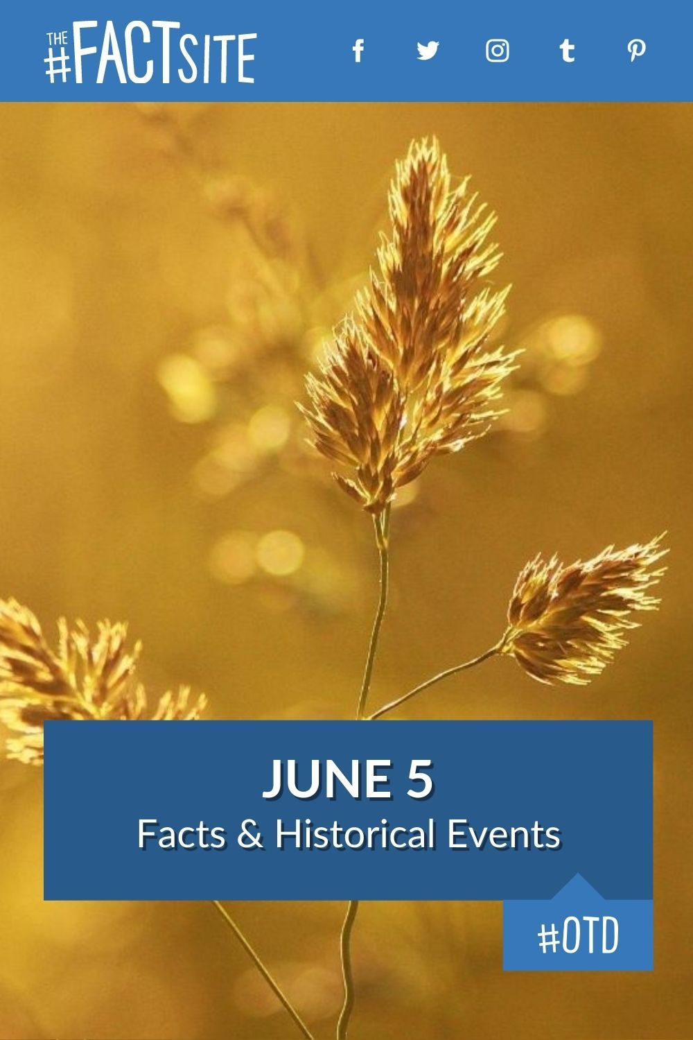 Facts & Historic Events That Happened on June 5