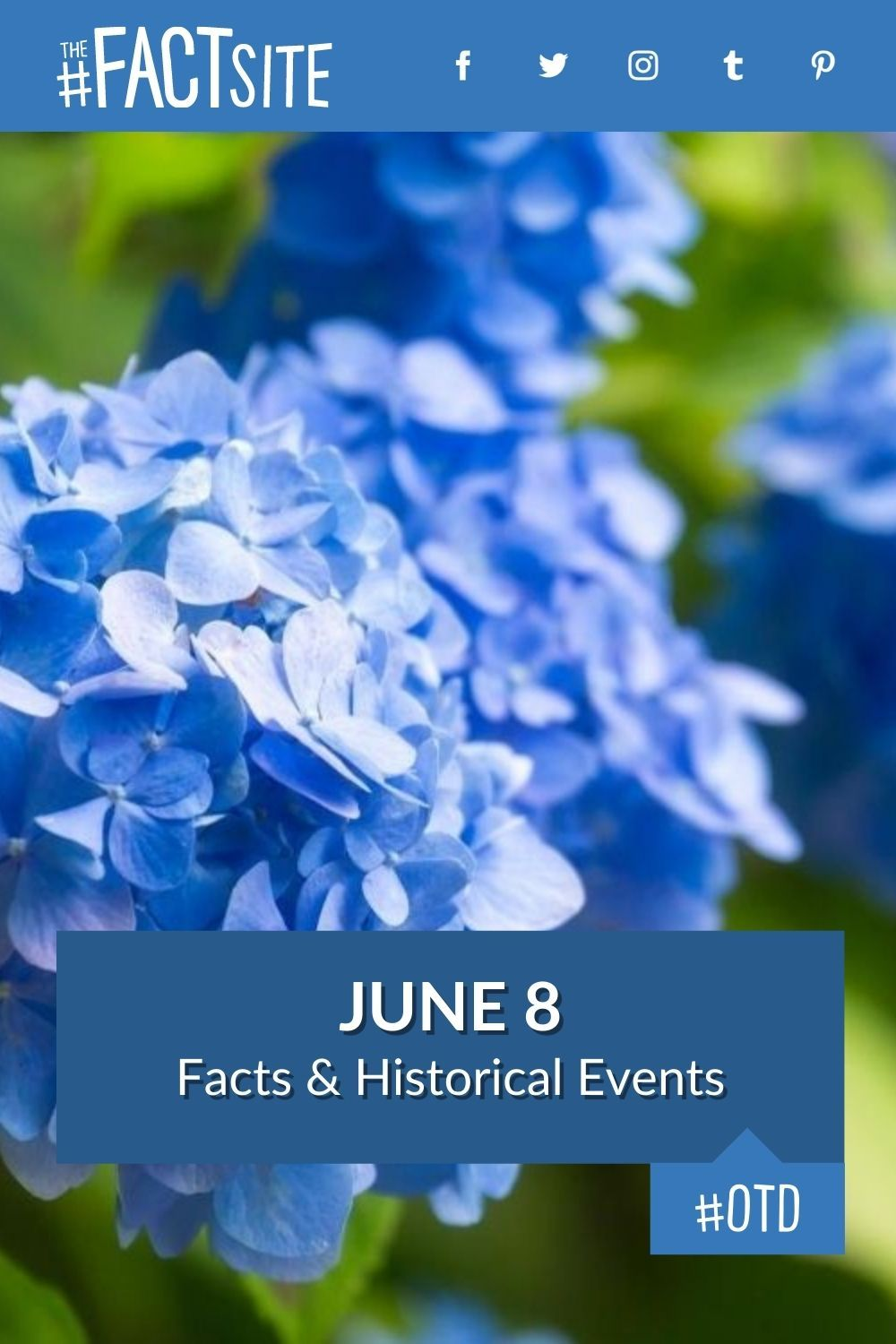 Facts & Historic Events That Happened on June 8
