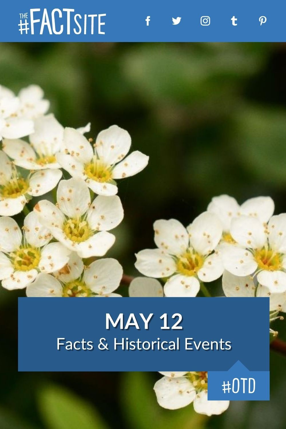 Facts & Historic Events That Happened on May 12