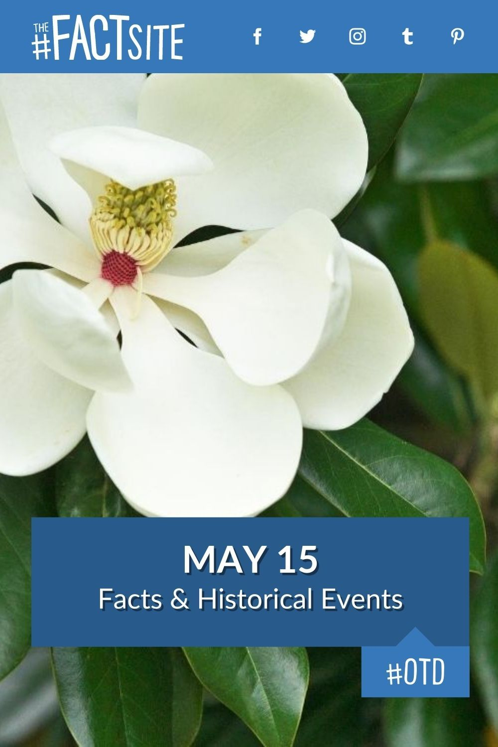 Facts & Historic Events That Happened on May 15