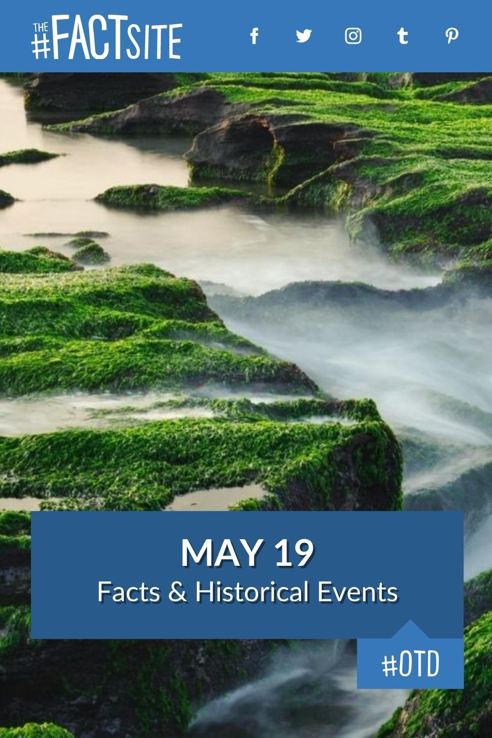 Facts & Historic Events That Happened on May 19