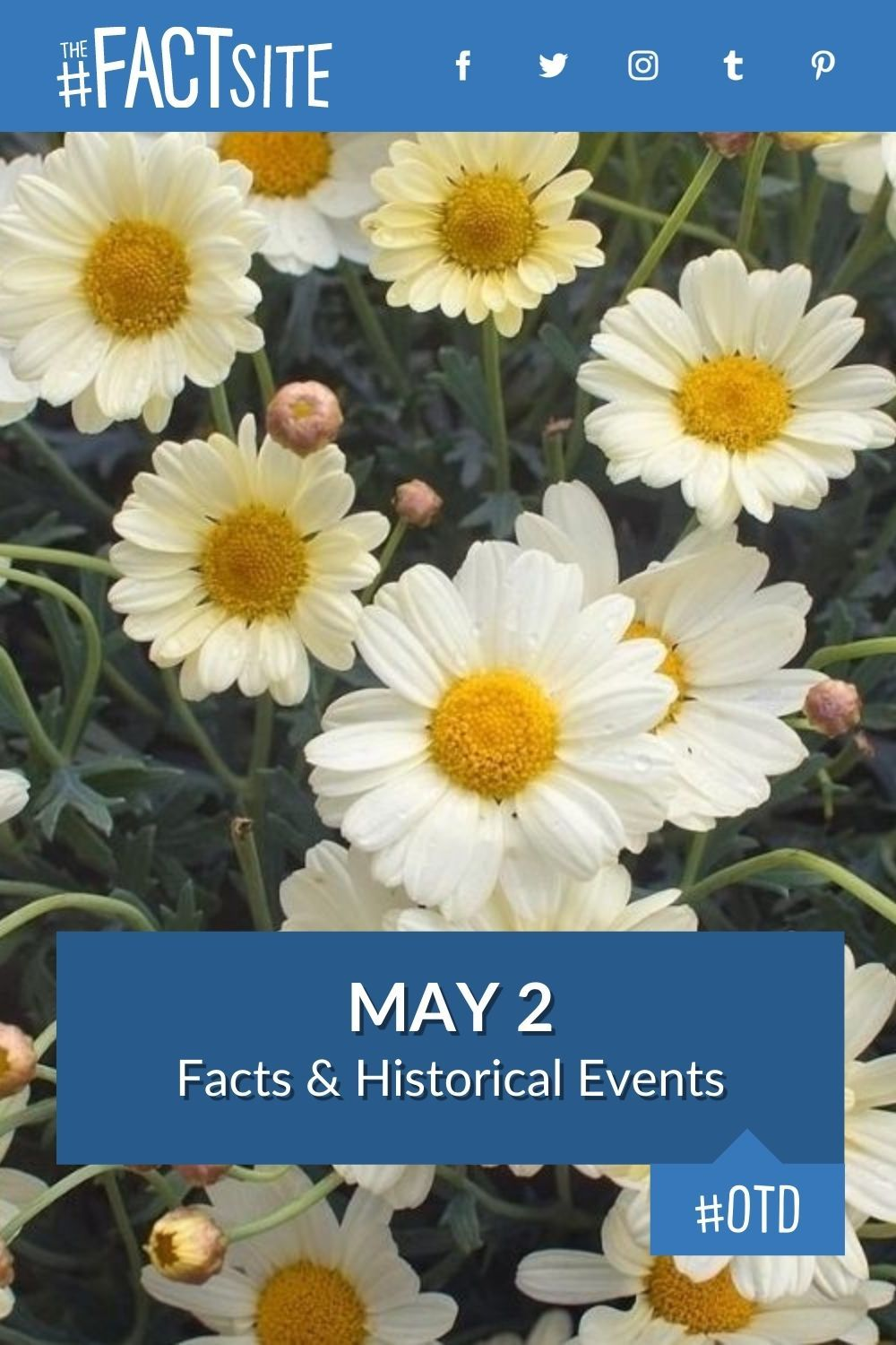 Facts & Historic Events That Happened on May 2