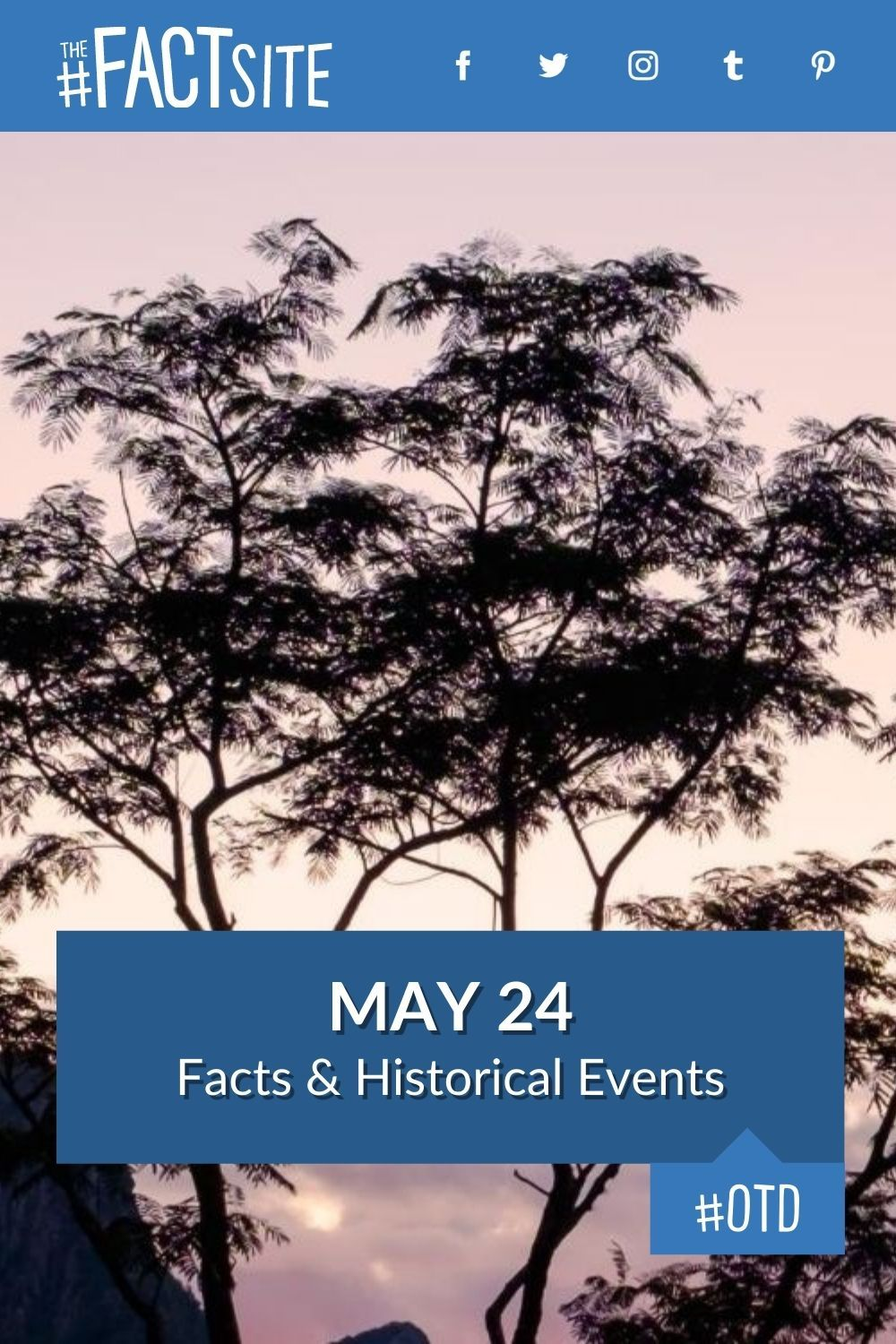 Facts & Historic Events That Happened on May 24