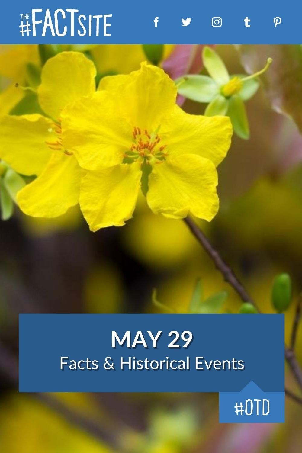 Facts & Historic Events That Happened on May 29