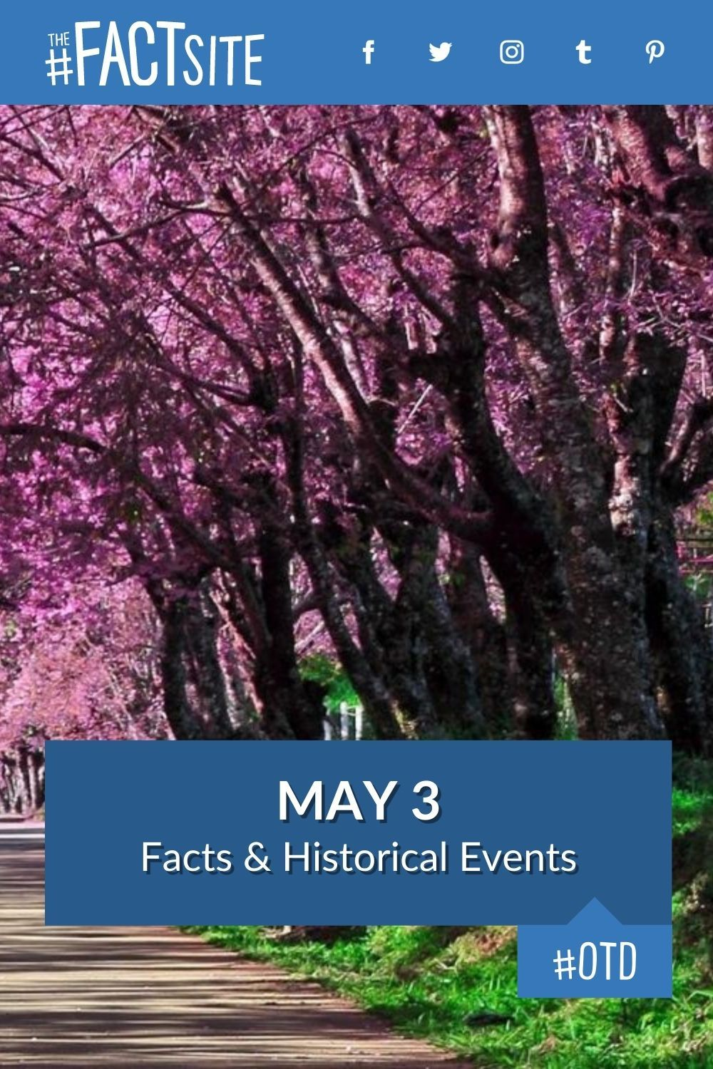 Facts & Historic Events That Happened on May 3