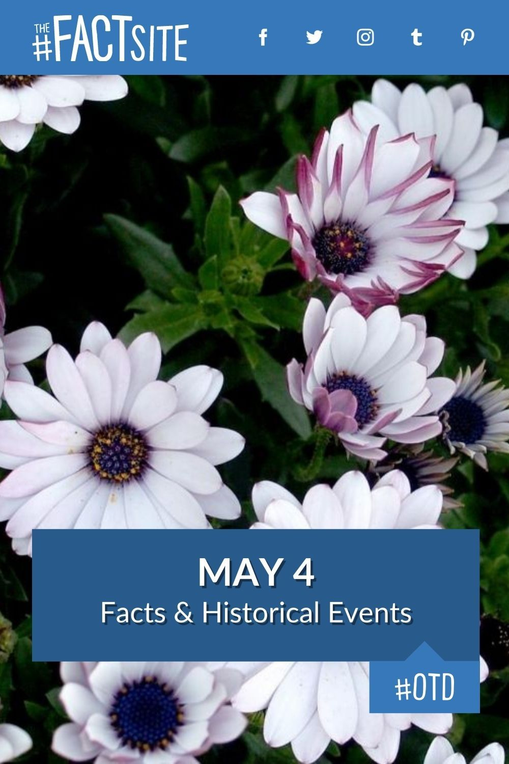 Facts & Historic Events That Happened on May 4