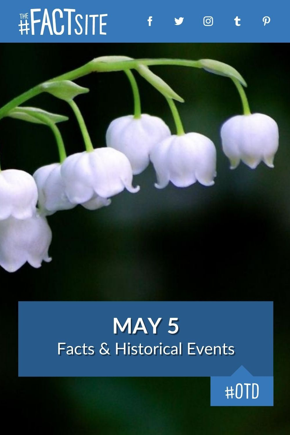Facts & Historic Events That Happened on May 5