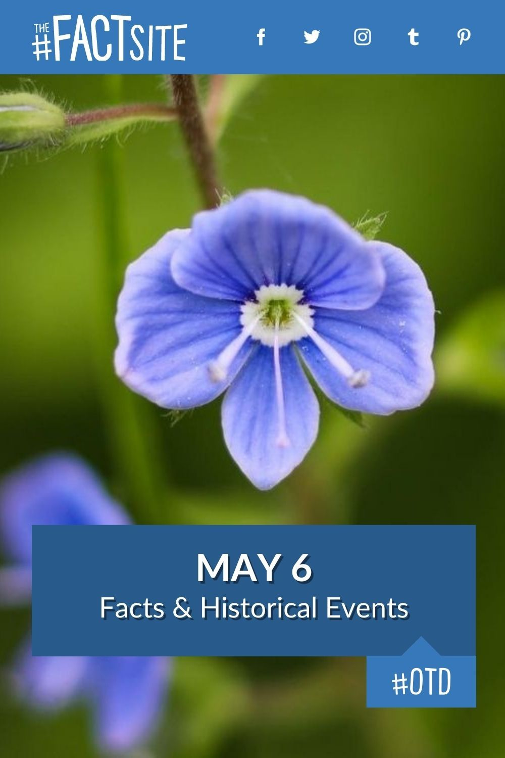 Facts & Historic Events That Happened on May 6
