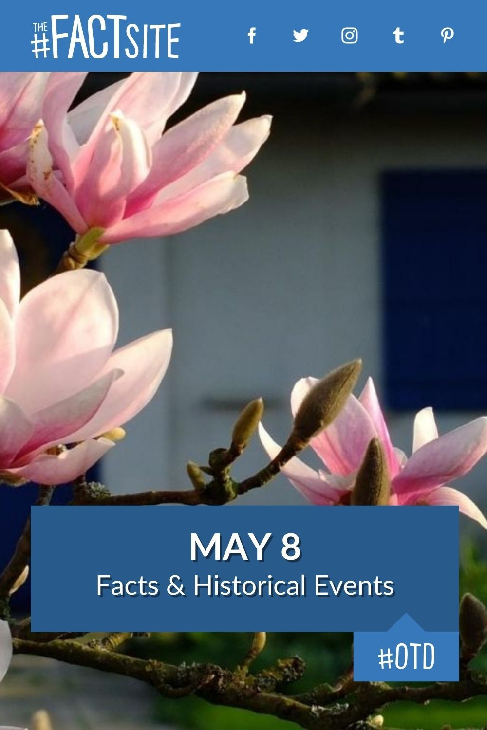 Facts & Historic Events That Happened on May 8