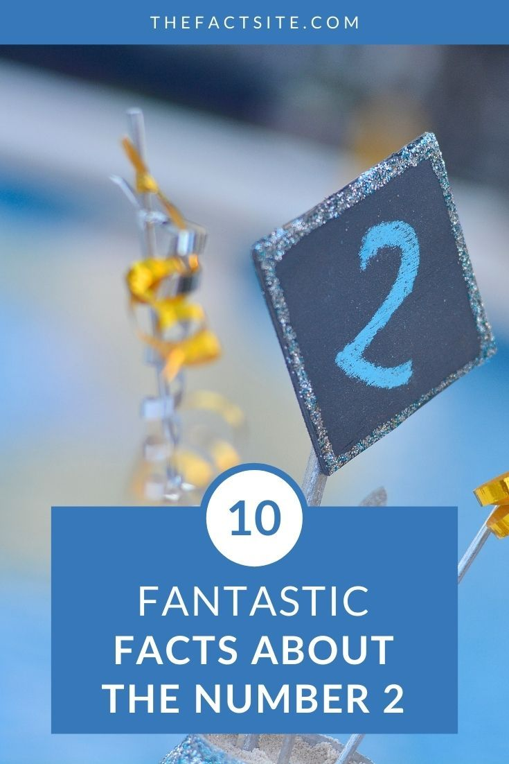 10 Fantastic Facts About The Number 2