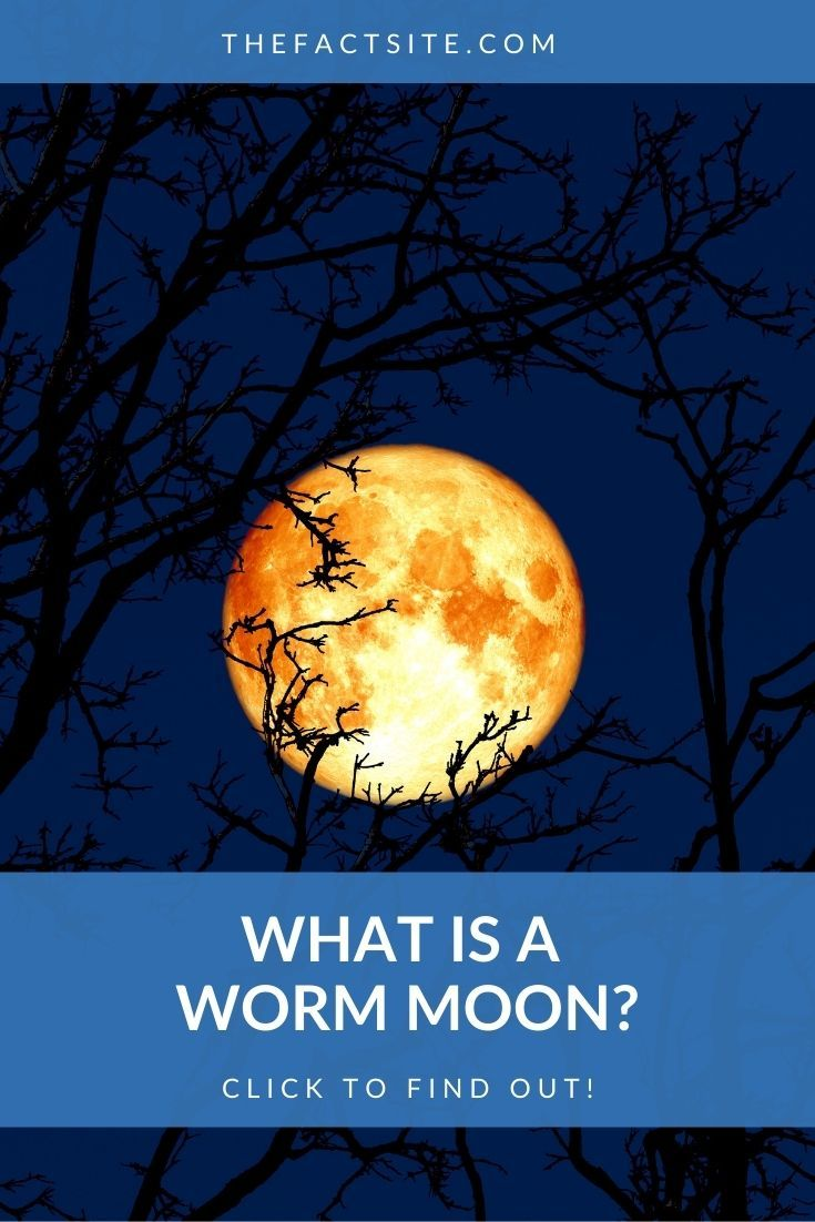 What Is A Worm Moon?