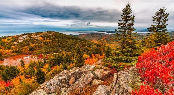 Maine is 80% forested