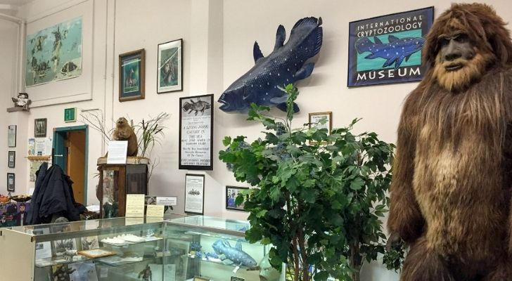 A look inside of the Cryptozoology Zoo in Maine