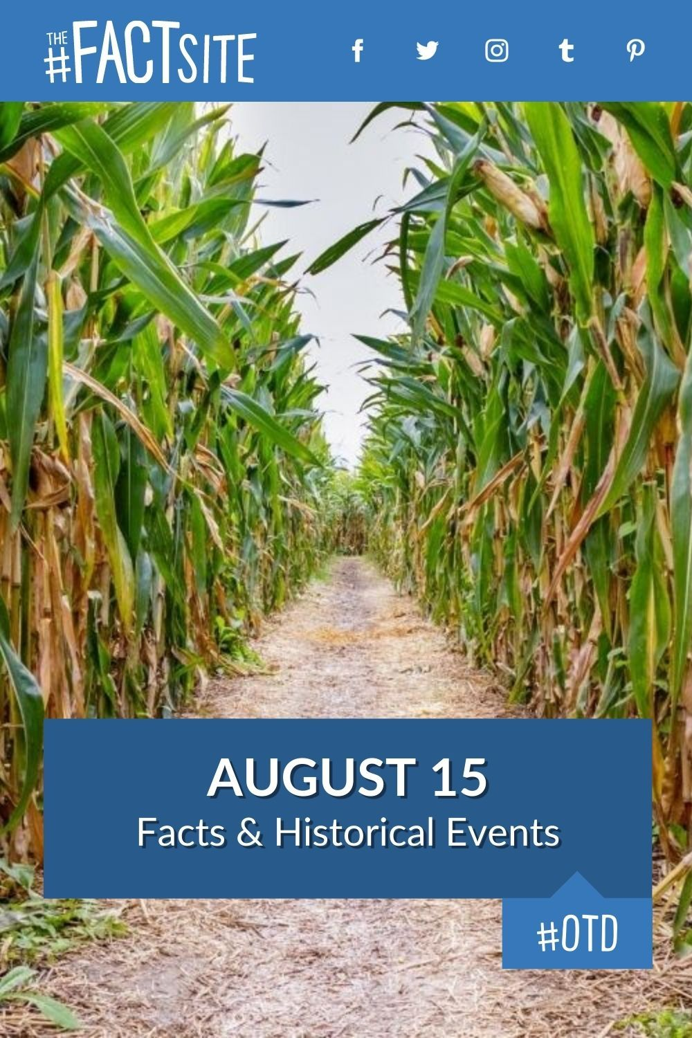 Facts & Historic Events That Happened on August 15
