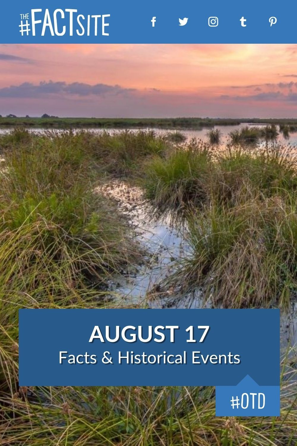 Facts & Historic Events That Happened on August 17