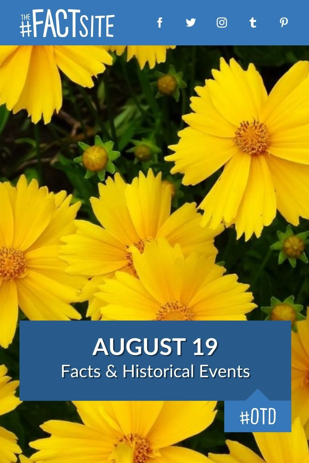 Facts & Historic Events That Happened on August 19