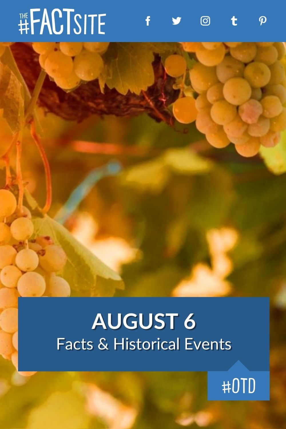 Facts & Historic Events That Happened on August 6