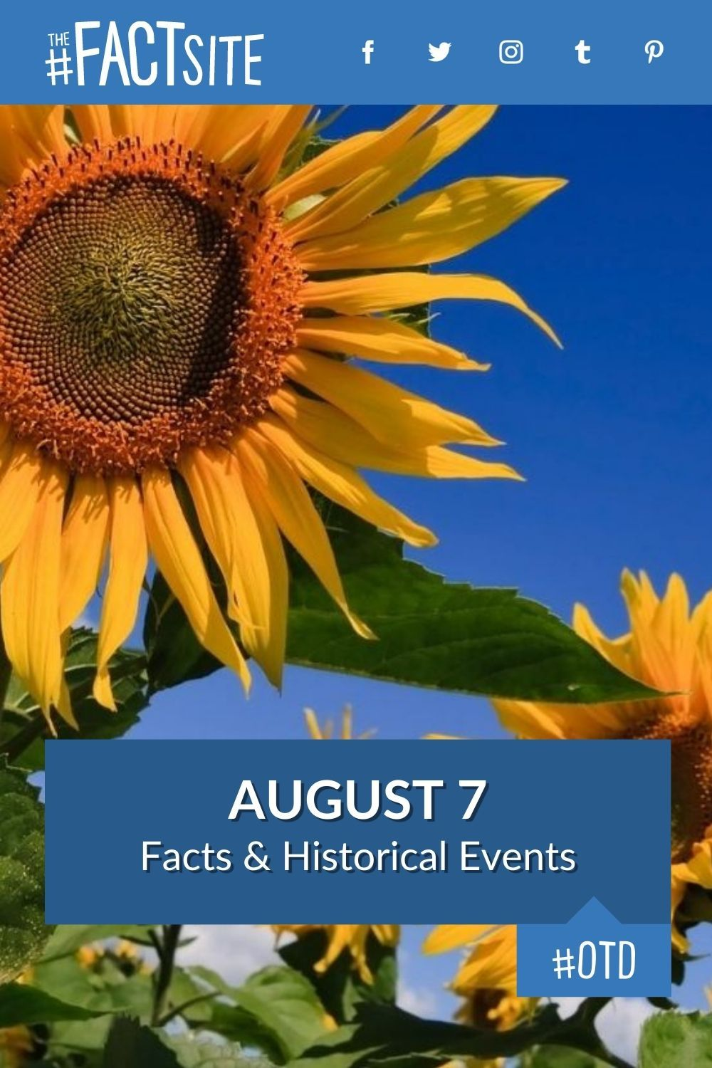 Facts & Historic Events That Happened on August 7