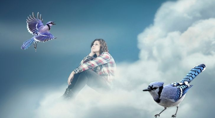 A girl dreaming about Blue jay birds