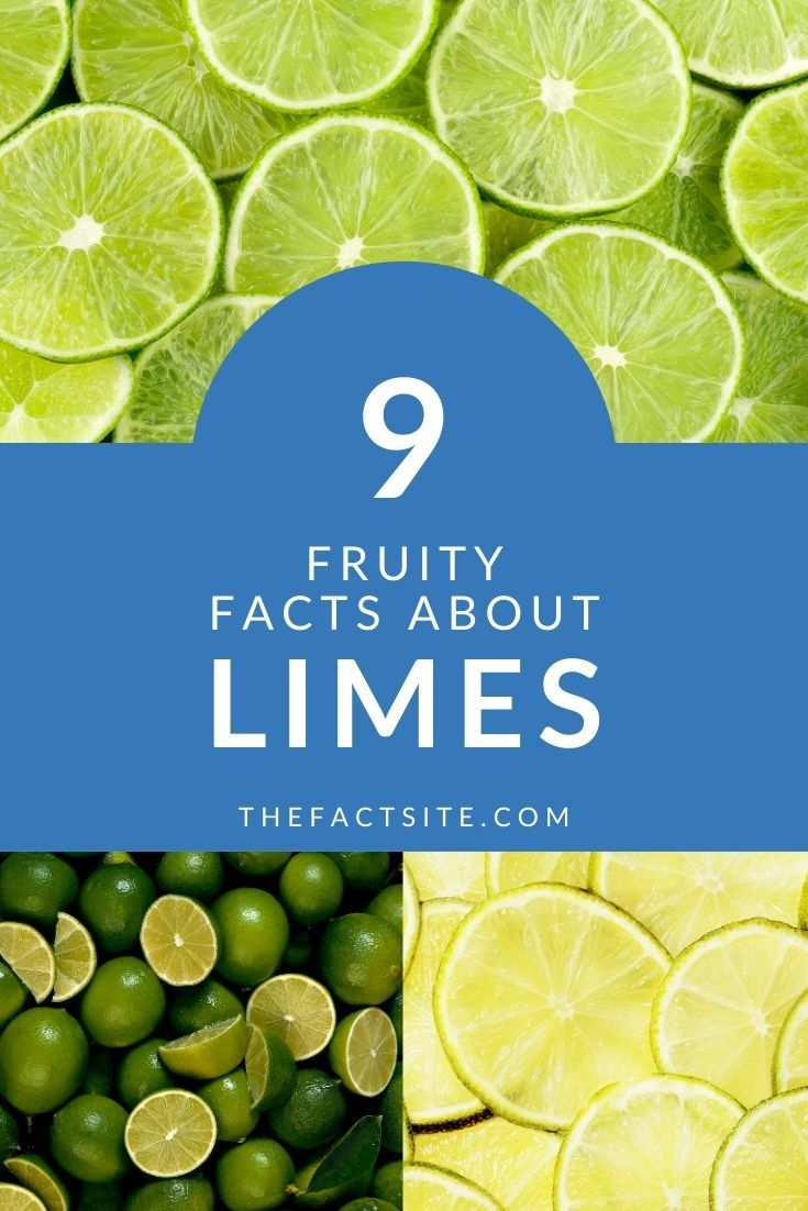 9 Fruity Facts About Limes