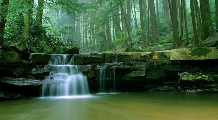 Beautiful lush forest area with a flowing waterfall and river running through it