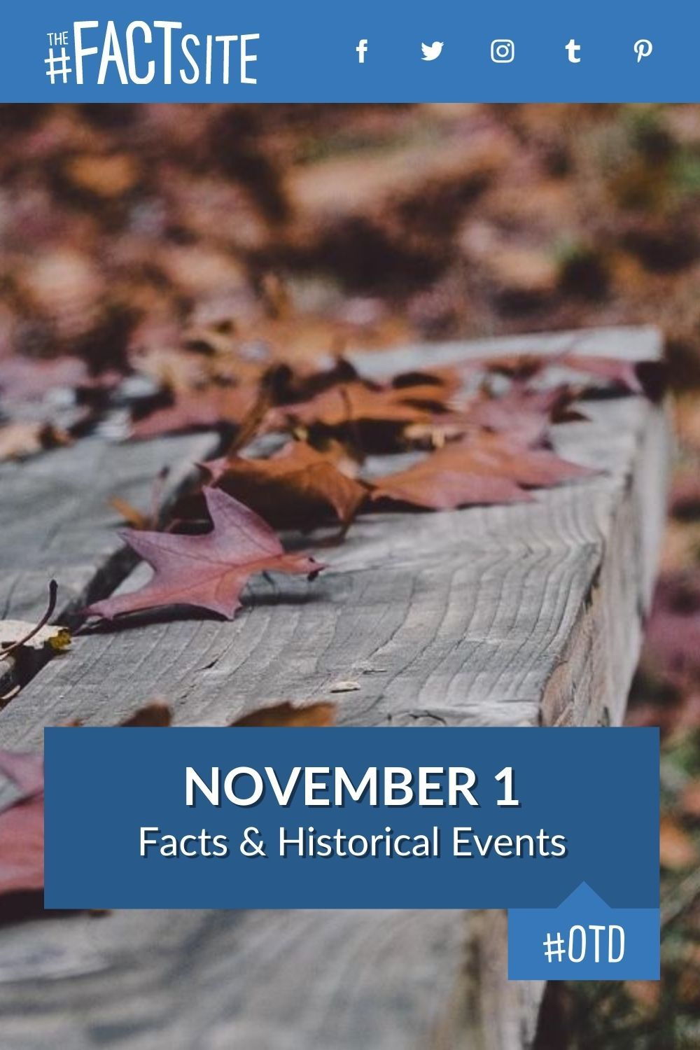 Facts & Historic Events That Happened on November 1