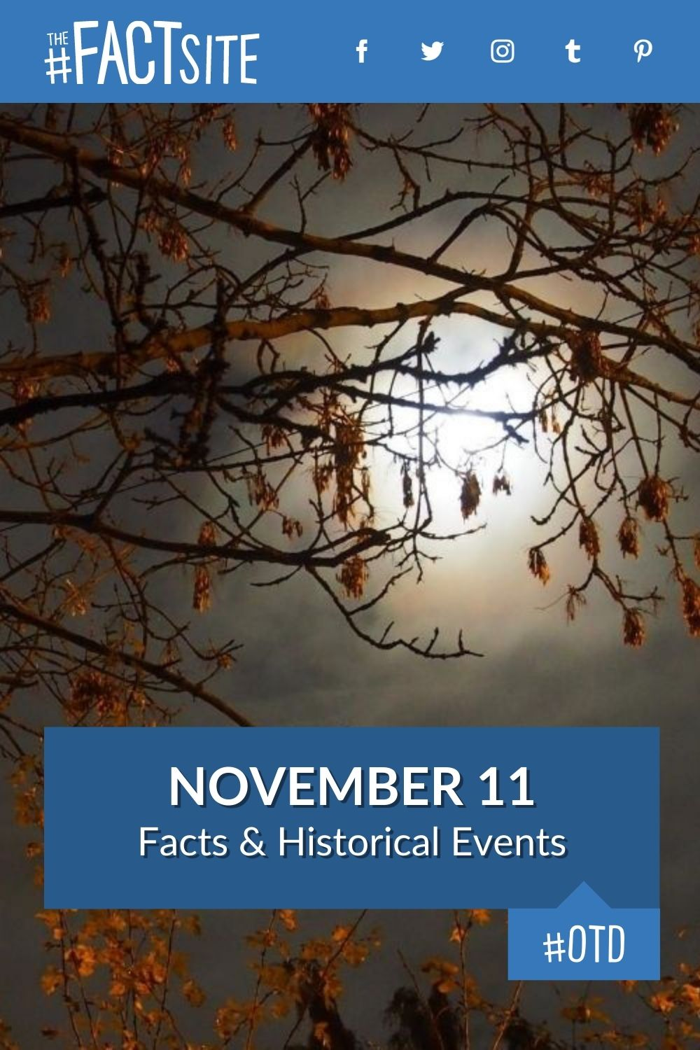 Facts & Historic Events That Happened on November 11