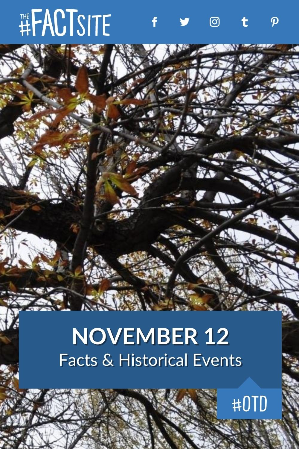 Facts & Historic Events That Happened on November 12