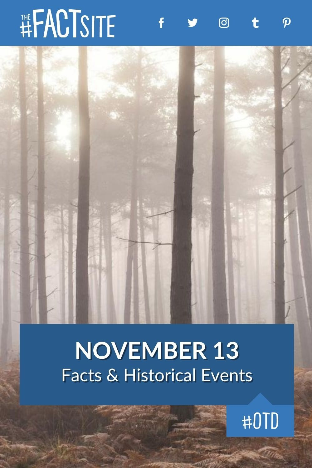 Facts & Historic Events That Happened on November 13
