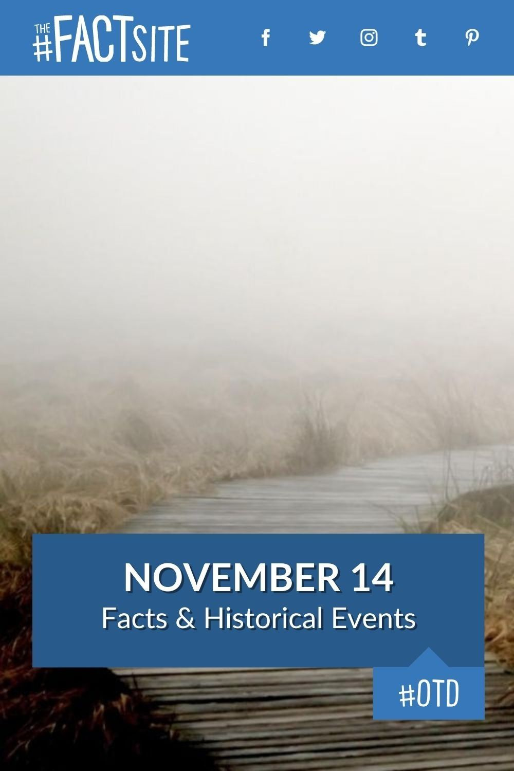 Facts & Historic Events That Happened on November 14