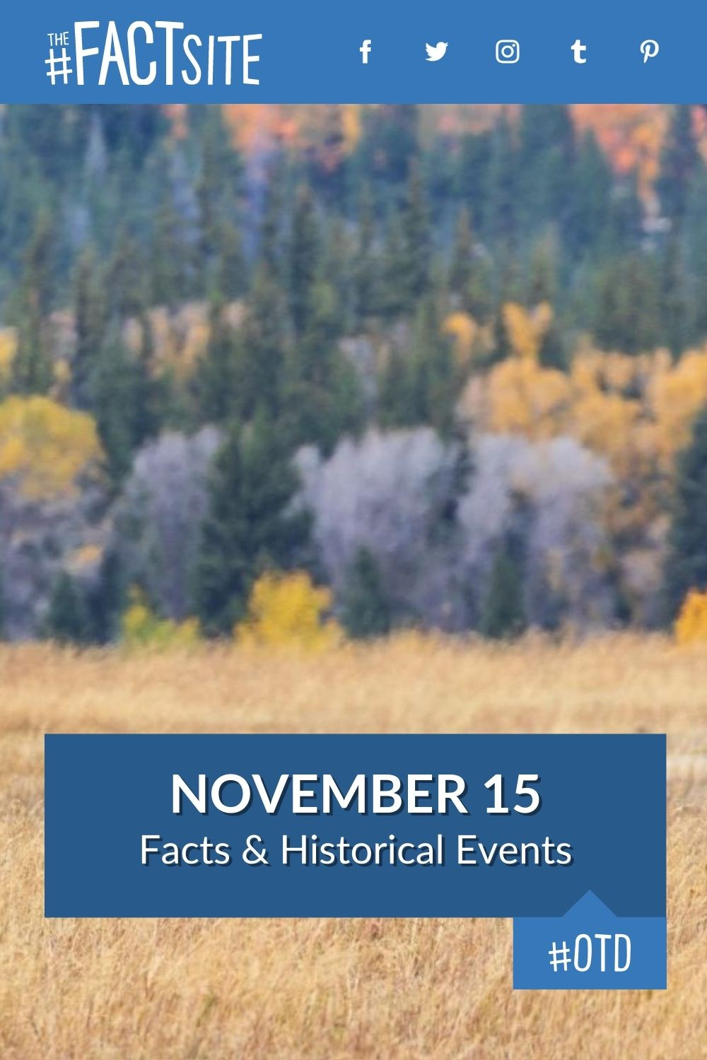 Facts & Historic Events That Happened on November 15
