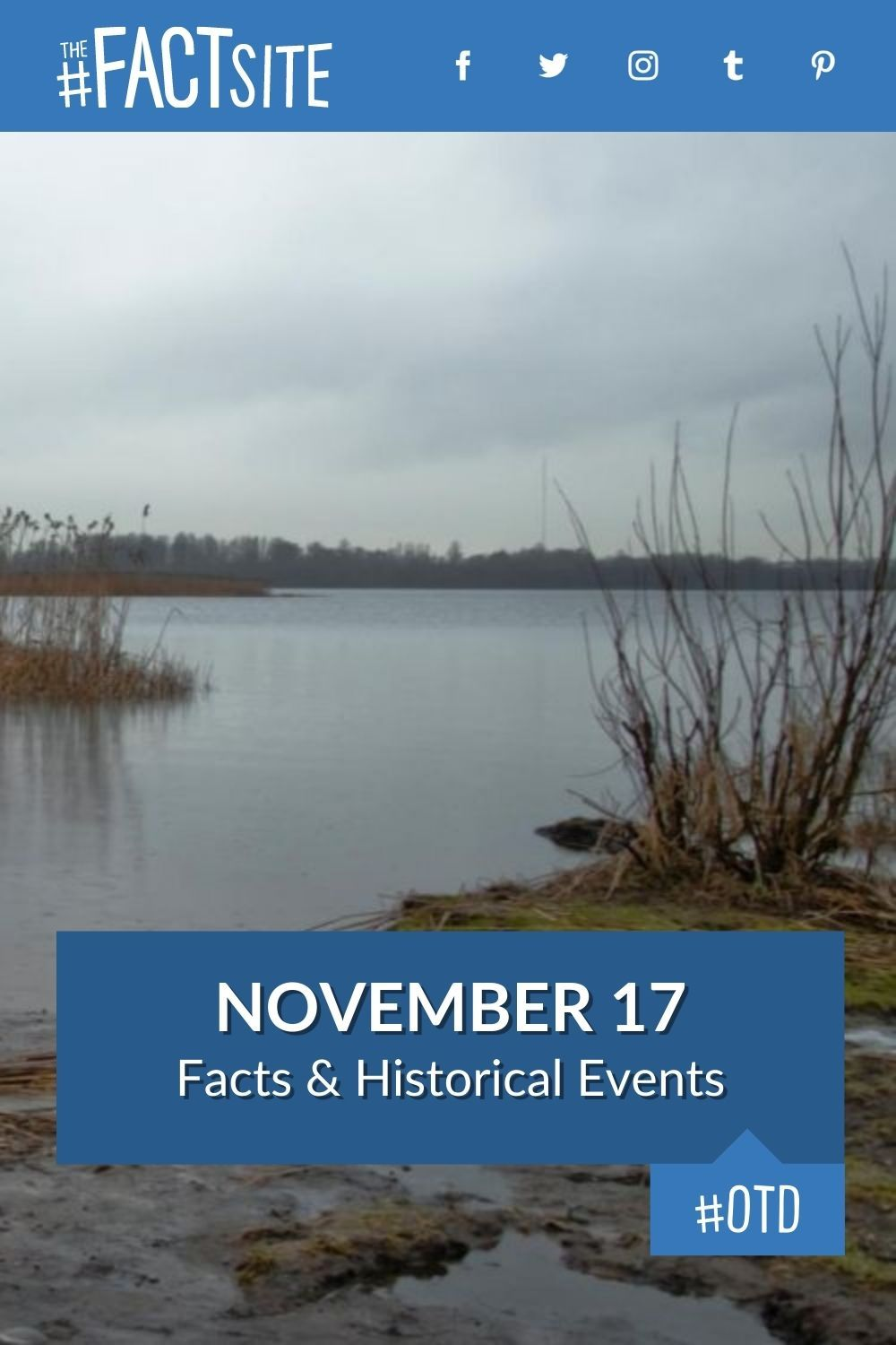 Facts & Historic Events That Happened on November 17