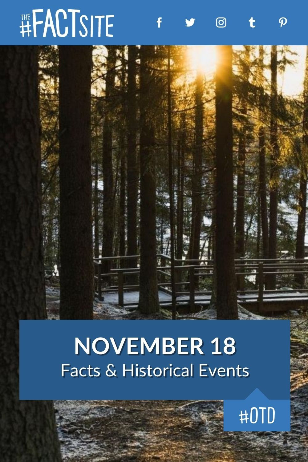 Facts & Historic Events That Happened on November 18