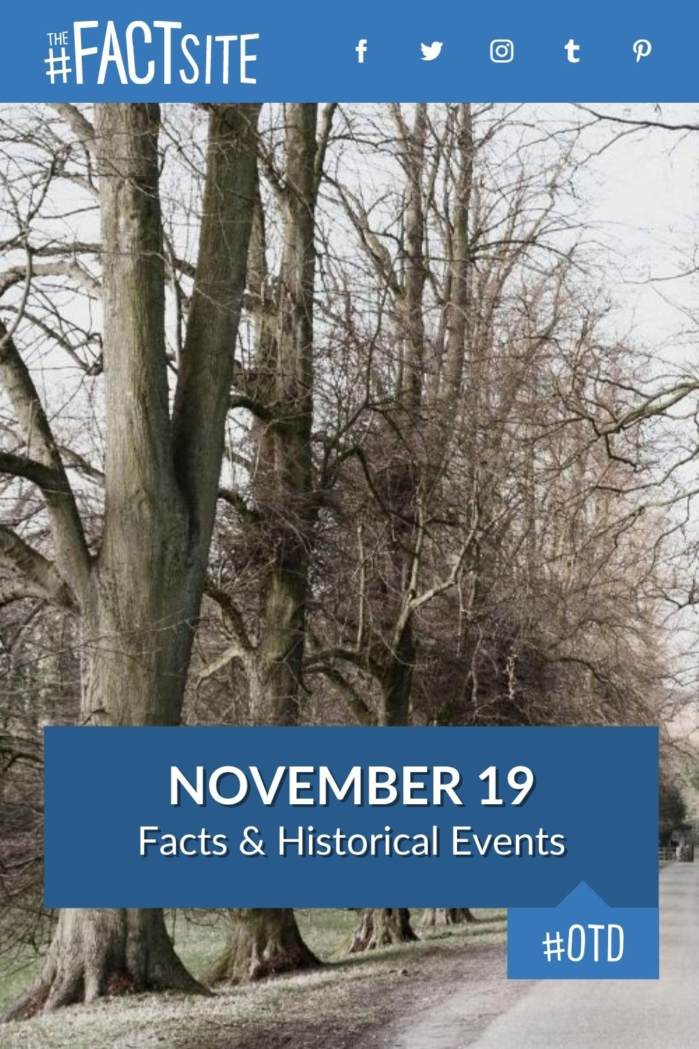 Facts & Historic Events That Happened on November 19