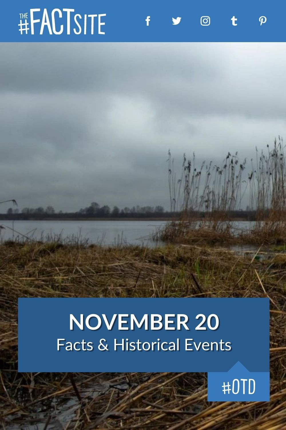 Facts & Historic Events That Happened on November 20