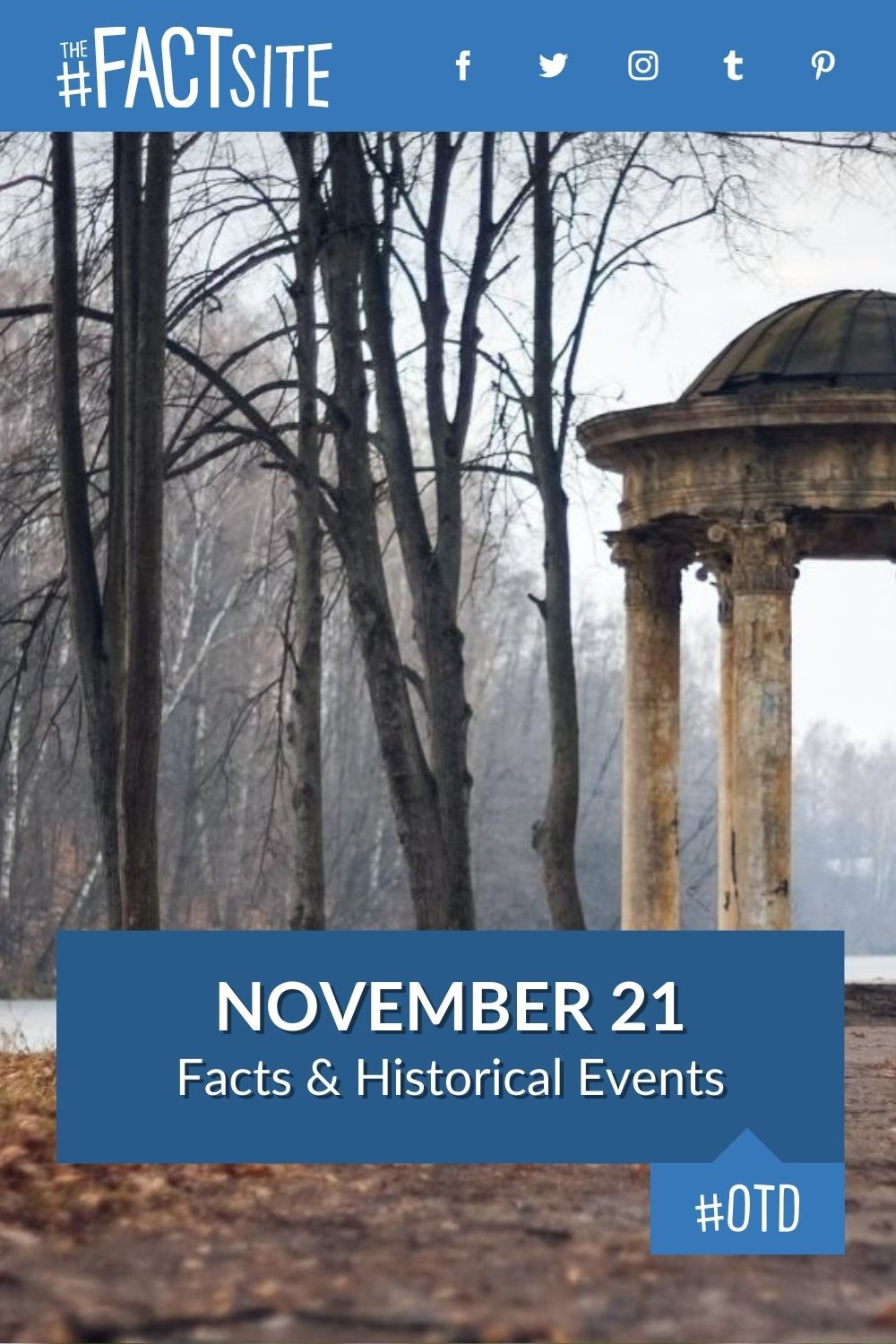 Facts & Historic Events That Happened on November 21