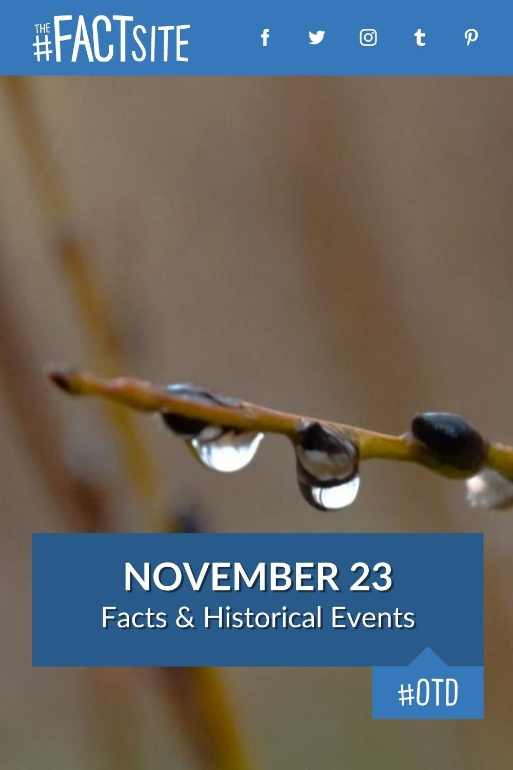 Facts & Historic Events That Happened on November 23