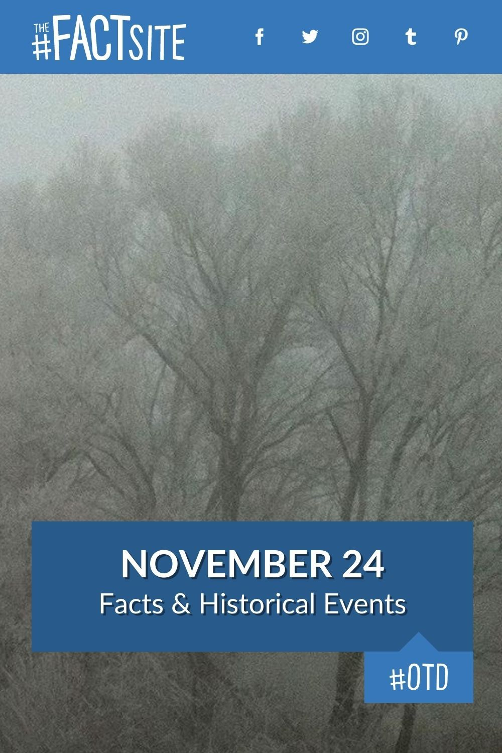 Facts & Historic Events That Happened on November 24