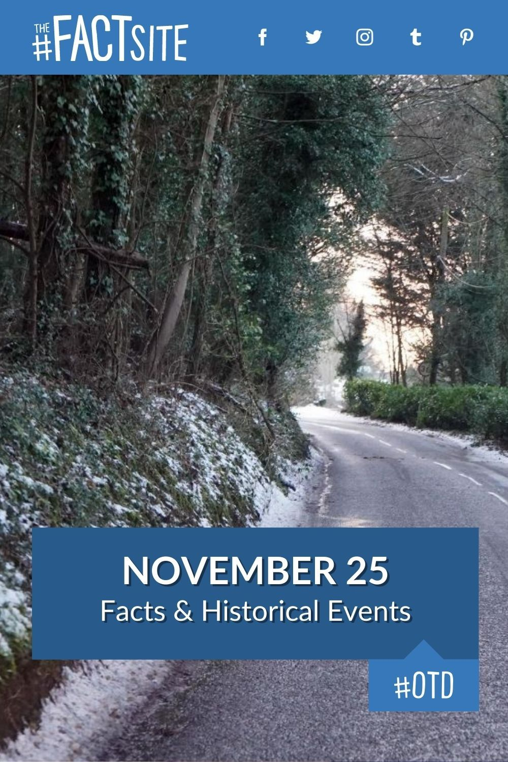 Facts & Historic Events That Happened on November 25