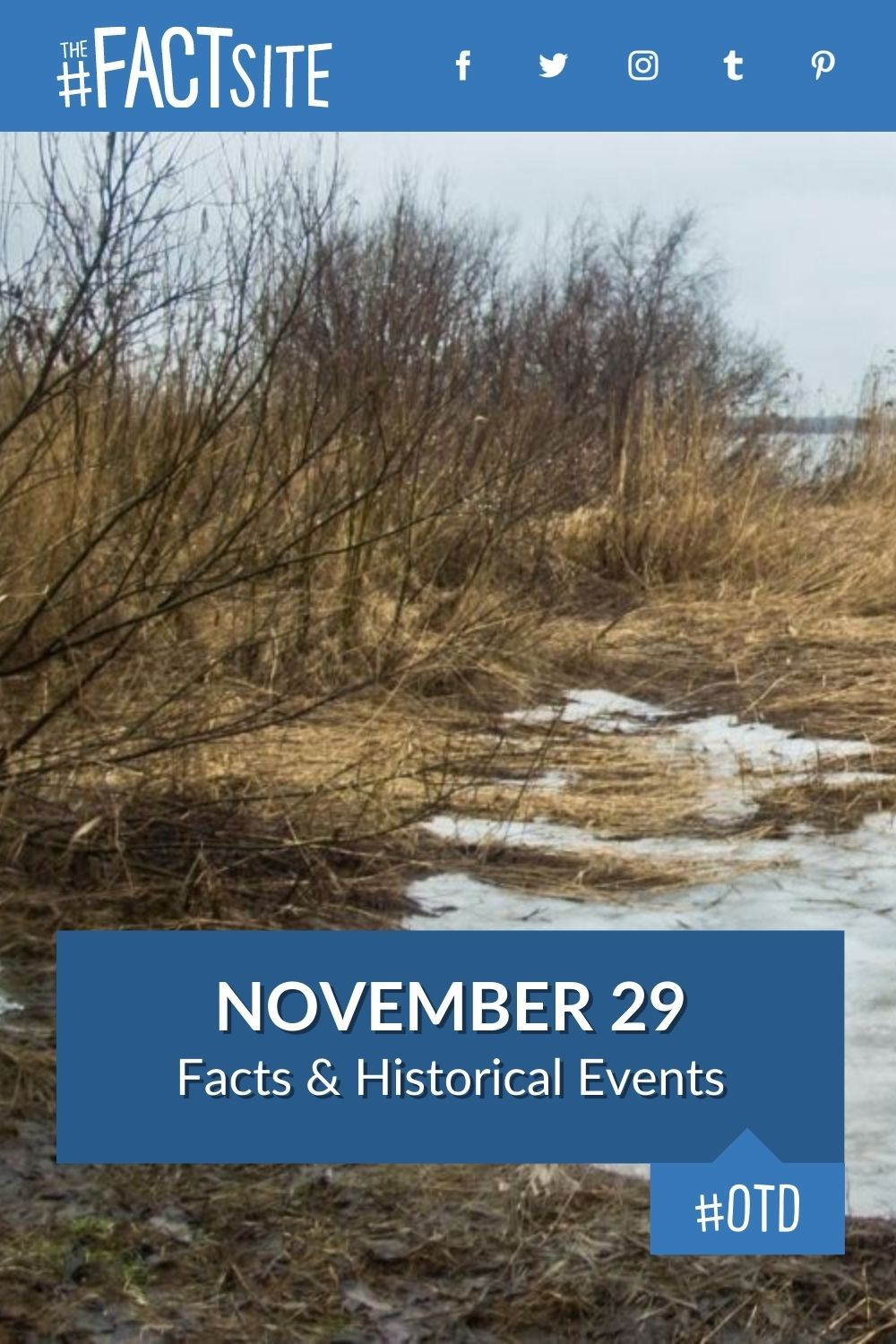 Facts & Historic Events That Happened on November 29