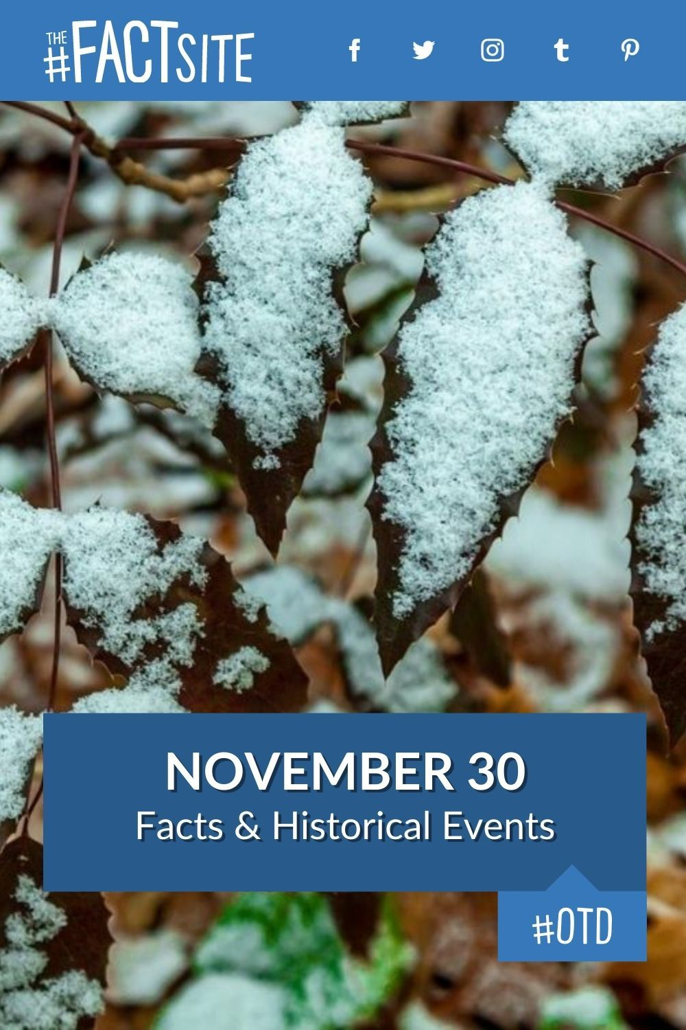 Facts & Historic Events That Happened on November 30
