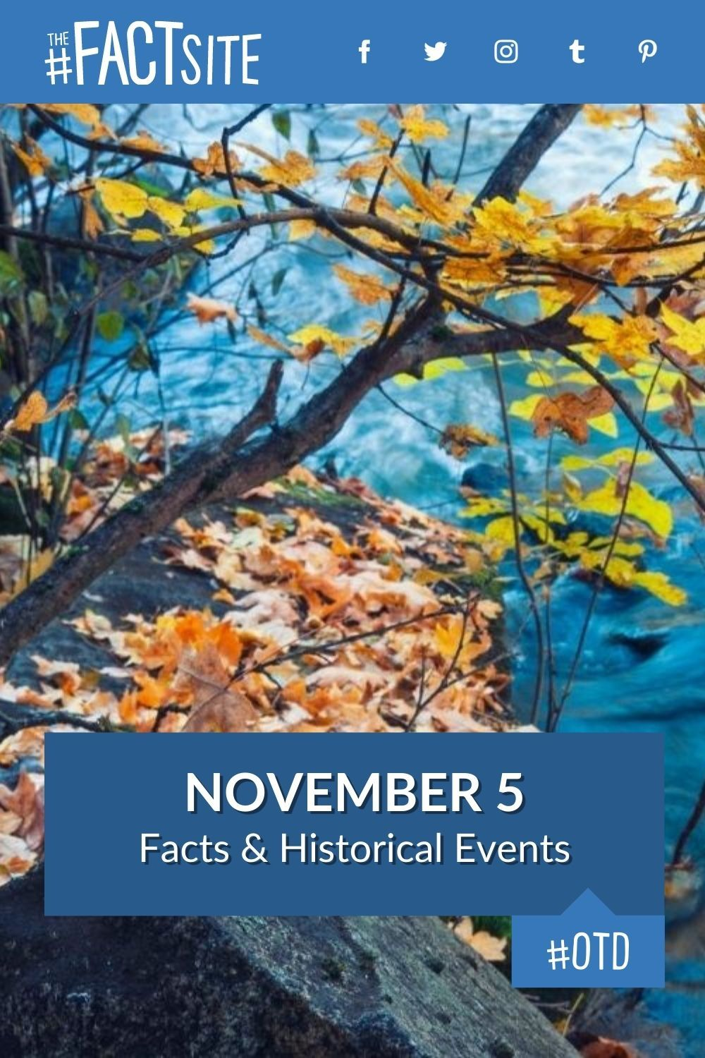 Facts & Historic Events That Happened on November 5
