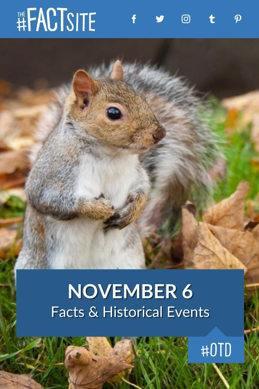 Facts & Historic Events That Happened on November 6