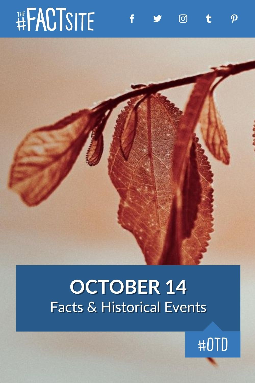 Facts & Historic Events That Happened on October 14