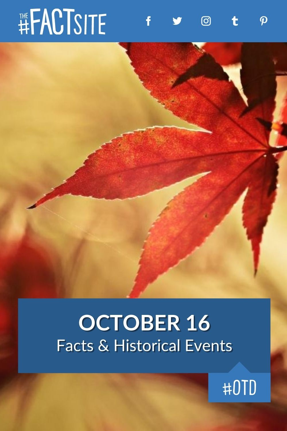 Facts & Historic Events That Happened on October 16